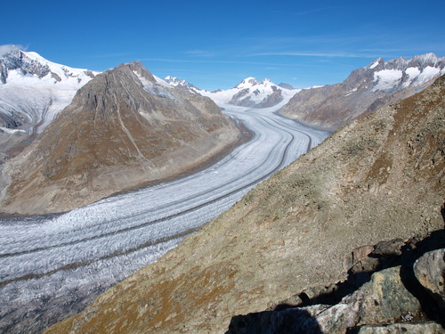 The Aletsch Glacier (German: Aletschgletscher) or Great Aletsch Glacier (German: Grosser Aletschgletscher) is the largest glacier in the Alps. It has a length of about 23 km (14 mi) and covers more than 120 square kilometres (46 sq mi) in the eastern Bernese Alps in the Swiss canton of Valais. The Aletsch Glacier is composed by three smaller glaciers converging at Concordia, where its thickness is estimated to be near 1 km (3,300 ft). It then continues towards the Rhone valley before giving birth to the Massa River.