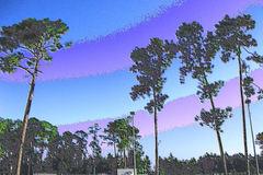 Some trees glisten in enamel along Georgia