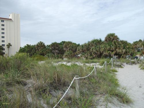 A trail heads to the coastline of Siesta Keys Beach, US