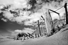 Mini_xshov0pv-beach_fence_bw