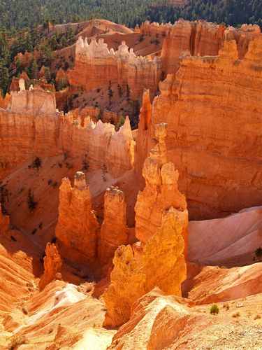One of the key sandstone pillars or Hoodoos known as Thor's Hammer at Sunset Point in Bryce Canyon National Park, Utah