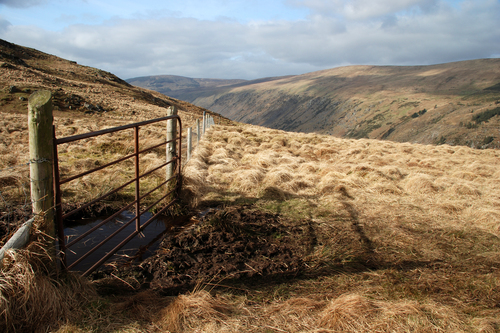 Gate in a fence on Cloghernagh, Glenmalure Wicklow