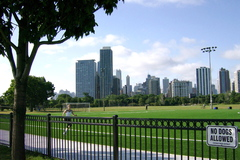 A nice Saturday afternoon in a Chicago park gives opportunities for outdoor activities