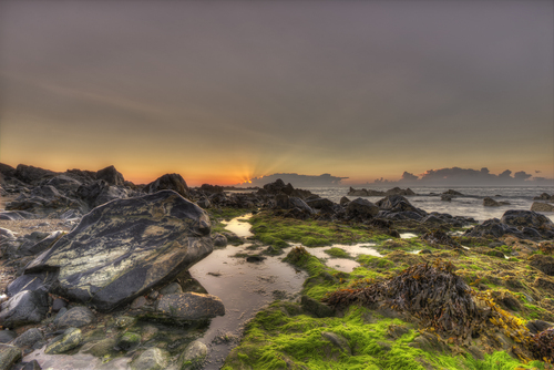 St Helens Bay.