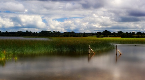 Gailey Bay on the shore of Lough Ree,