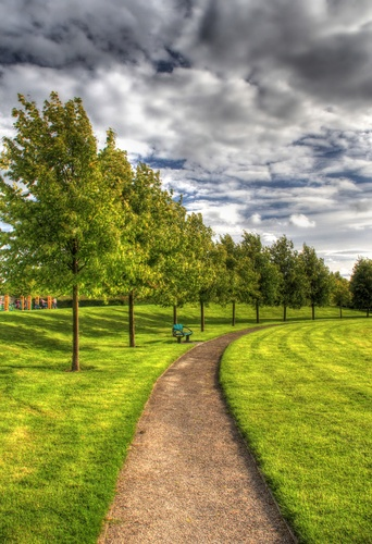 The Tree lined path at Loughnaneane Park, Roscommon