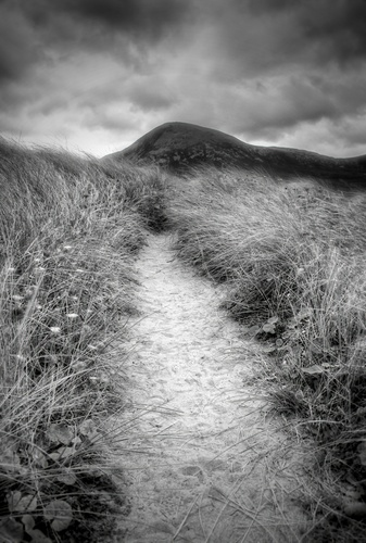 Path in the dunes taken at Bertra beach, Westport, Co Mayo.
