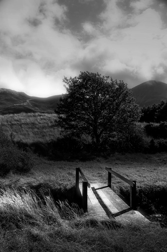 A little wooden bridge across a little stream at Clew Bay, Westport, Co Mayo