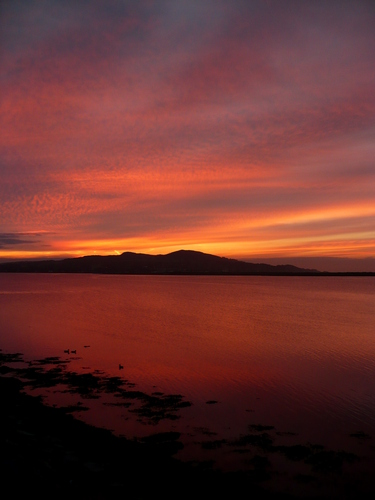 Dawn over Howth Head Portrait