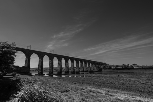 Photograph showing the bridges across the River Tweed.
