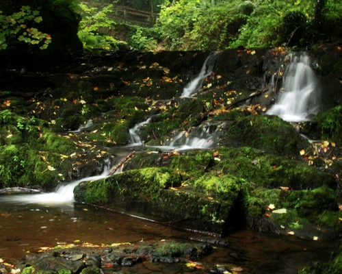 The 565 acre Dún na Rí Forest Park is just outside Kingscourt along the banks of the River Cabra and features a dramatic gorge embracing part of the Cabra Estate.  The Glen of the Cabra River stretches the full length of the park and is an area steeped in history and legend.