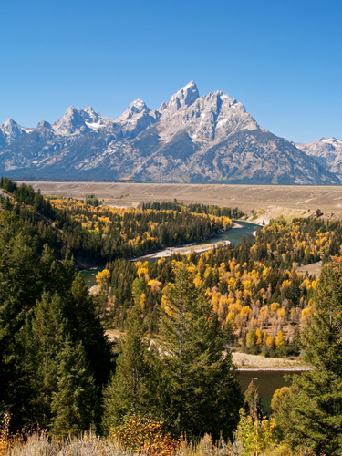 Autumnal view across a large meander in the Snake River towards Grand Teton beyond in Grand Teton National Park, Wyoming.