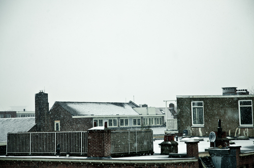 Roof terrace in Amsterdam west.