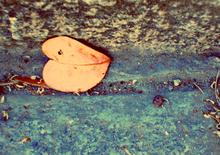 Mini_131106-050454-lok_heart