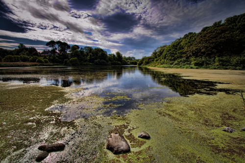 River Quoile, Downpatrick