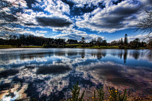 Dungannon Park Reflections