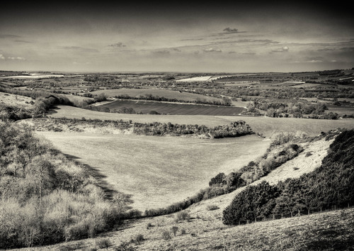 by Ed Juon  A view from Inkpen Hill looking towards the Berkshire border.