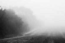 Mini_140201-152738-misty_morning