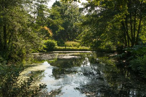 Wakehurst Kew Gardens