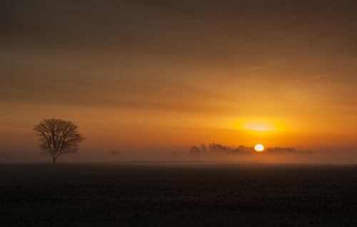 A hint of mist during a Lincolnshire fenland sunrise.