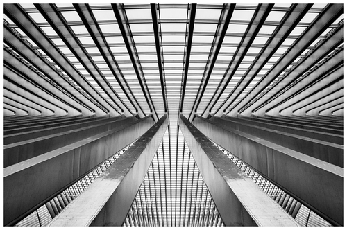 Liège-Guillemins trains station is a beautiful modern construction which differs from the classical & traditional station found in Belgium. The symmetry and perspective created whilst going through the station is very strong as can be seen in this image.