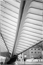Mini_140308-124958-belgiumliegetrainstationjacobsammutphotography-6