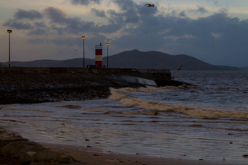 Seagulls riding the currents by the pier in Buncrana