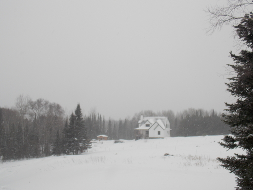 Country house with trees & snow