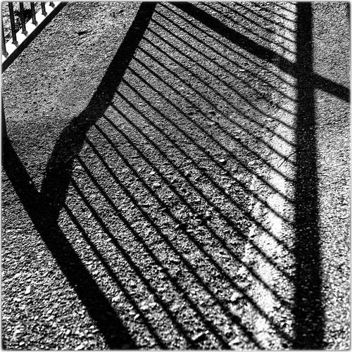 shadows of a street fence