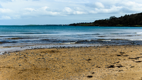 Beach at Crawfordsburn Country Park