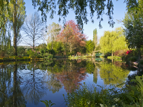 Mirror reflections on Claude Monet's water garden in springtime at Giverny in Normandy, France.