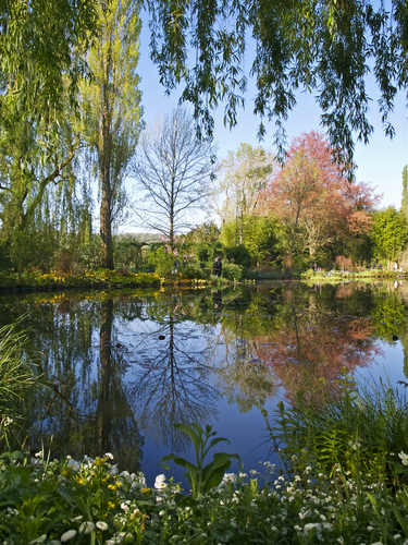 Springtime view of Claude Monet's famous water garden at Giverny in Normandy, France.