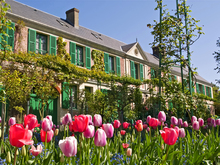 Springtime view of Claude Monet's house rising out of the tulips at Giverny in Normandy, France.