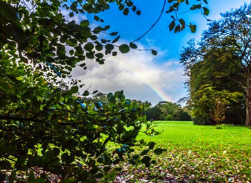 St Ann's Park Rainbow