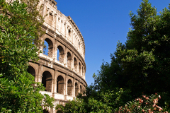 An early summer morning view of the iconic Colosseum in Rome, Italy.