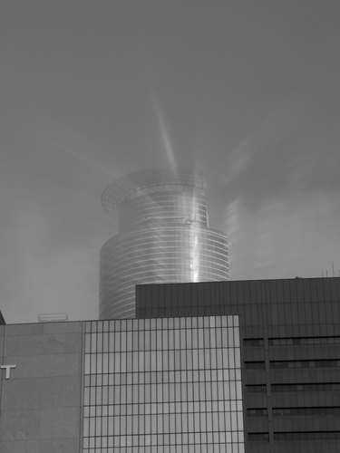The Capella Tower shinning through the mist on a summer morning.