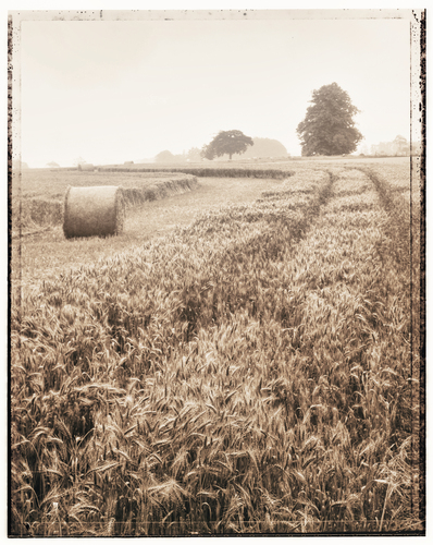Black & white photograph with duotone effect of bale of hay waiting to be collected during harvest time
