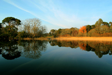 """Lake at Mucross House Killarney Co Kerry.   Know anyone who may be interested in a beautiful photographic print ? Please share this link with them. Thanks !"""""""