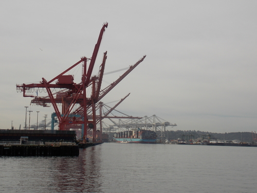 "Cranes on the Seattle waterfront appear to be doing the ""wave""."