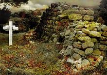 Mini_141123-171845-killegar_cemetery
