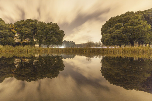 The Citadel Pond, Phoenix Park, Dublin.