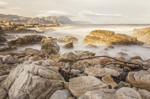 Hermanus. The Western Cape, South Africa.