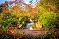 Located just 3 km from Dublin city centre, the National Botanic Gardens are an oasis of calm and beauty, and entry is free. A premier scientific institution, the gardens also contain the National Herbarium and several historic wrought iron glasshouses.