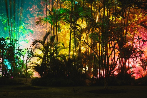 Beyond The Trees was shot during a concert in Singapore Botanical Gardens. The trees were literally alive with colour in this vibrant long exposure.