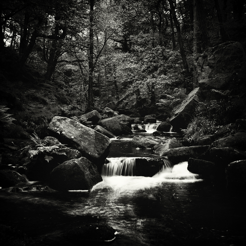 Taken with 50 year old Yashica TLR. The 120 black & white film gives a nice feel to what is quite an atmospheric place.