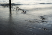 Mini_150916-081106-south_beach_cold_sunrise