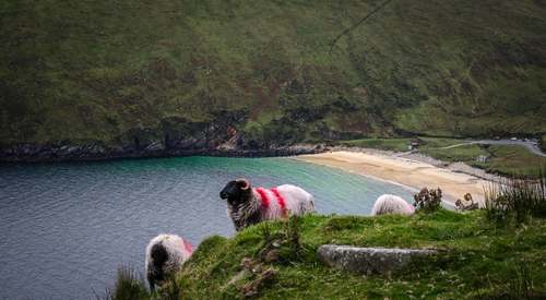 Taken in Achill Island overlooking Keem.