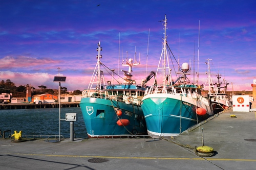 Fishing boats tied up at Dunmore east harbour in County Waterford, Ireland.