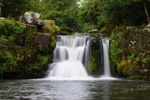 Cloonassy waterfall near Mullinavat in County Kilkenny, Ireland.