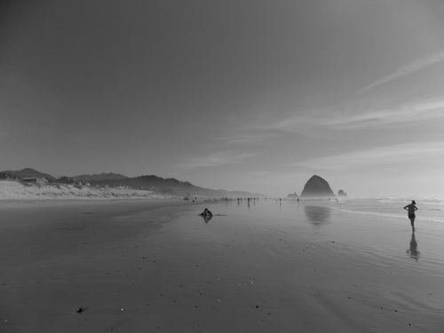 A clear sky, Haystack Rock and families enjoying it all.
